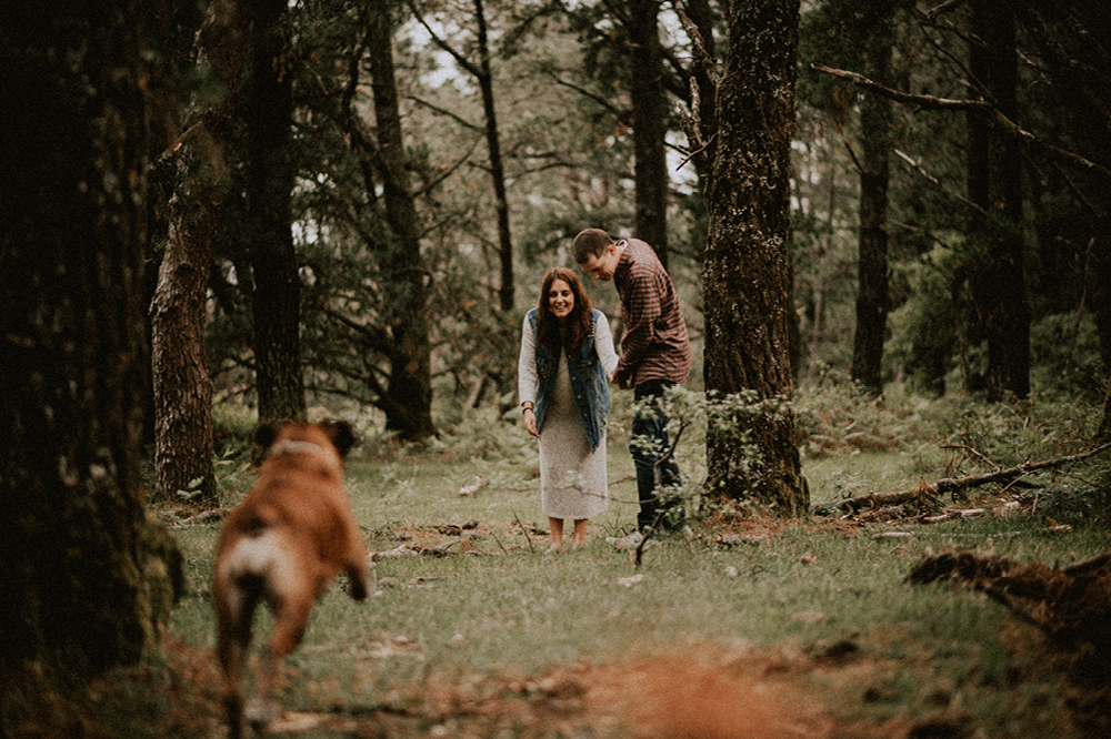 Fotografos boda bodas galicia retrato sesion fotografica bosque embarazada afiestra a fiestra fotografia lidia diego 4 - Lidia & Diego