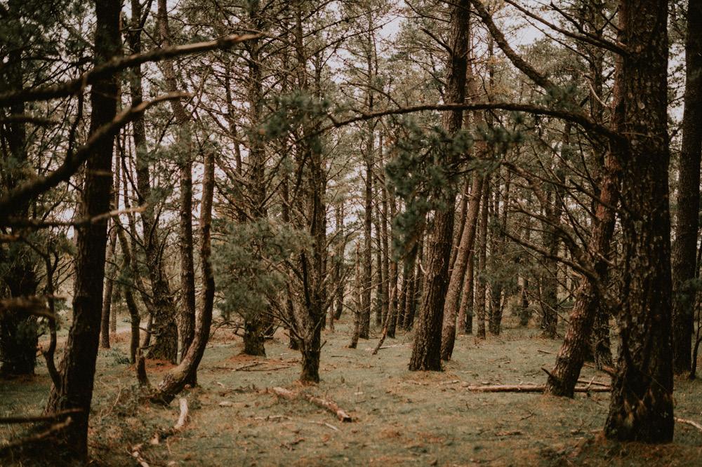 Fotografosbodabodasgaliciaretratosesiónfotograficacostaembarazadaafiestraa fiestrafotografiacreativaraqueldavid - Sesión familiar en un bosque de Galicia - Petite Olivia & Louis